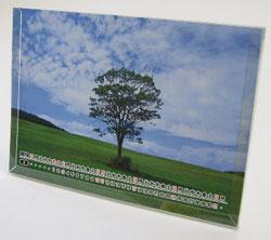卓上カレンダー印刷B6